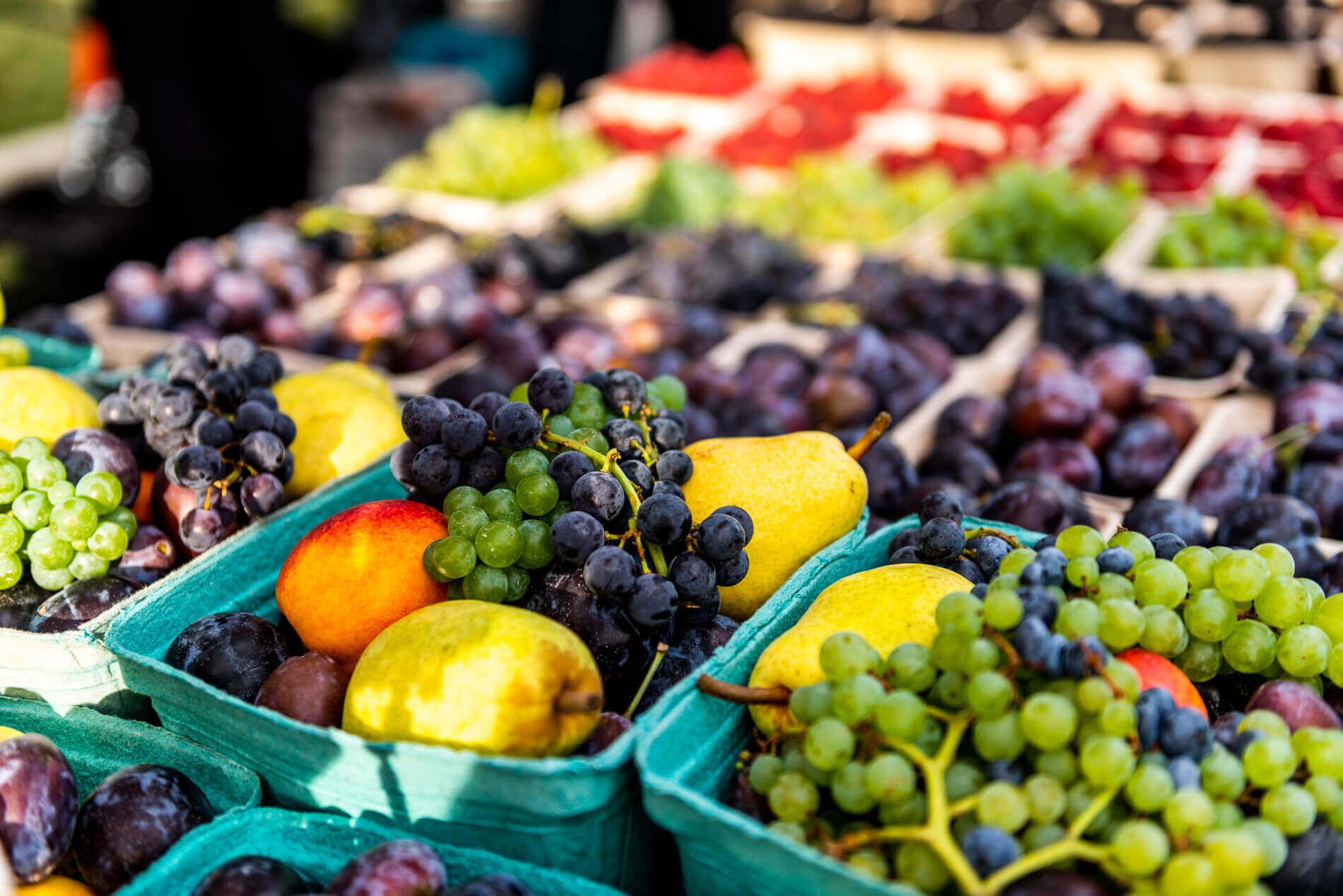 124 Street Farmer's Market Fruit Stand | Edmonton, Alberta